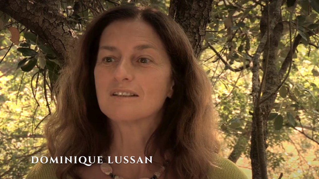 dominique-lussan-chromobiologie